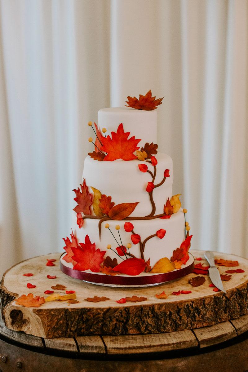 Logie Country House Wedding, Wedding cake, Anna Wytrazek Photography, Wedding Photographer Aberdeen
